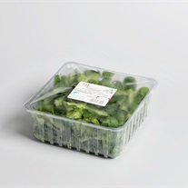 salad - plastic tray with topseal film